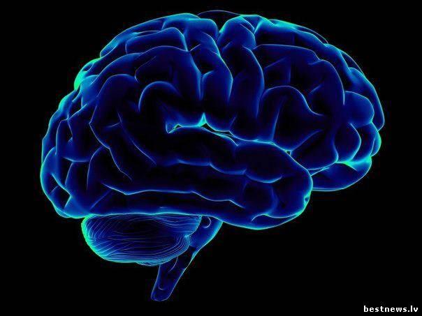 Посмотреть новость Упражнения для стимуляции работы мозга