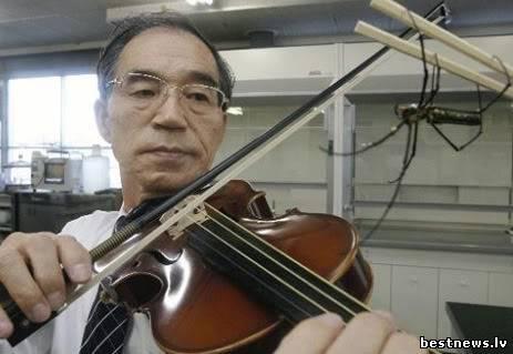 Посмотреть новость Струны для скрипки теперь делают из паут...
