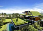 Симпотичный домик, у которого на крыше сделанна зелёная зона