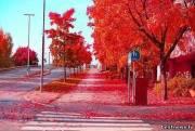 Красная осень, Стокгольм, Швеция